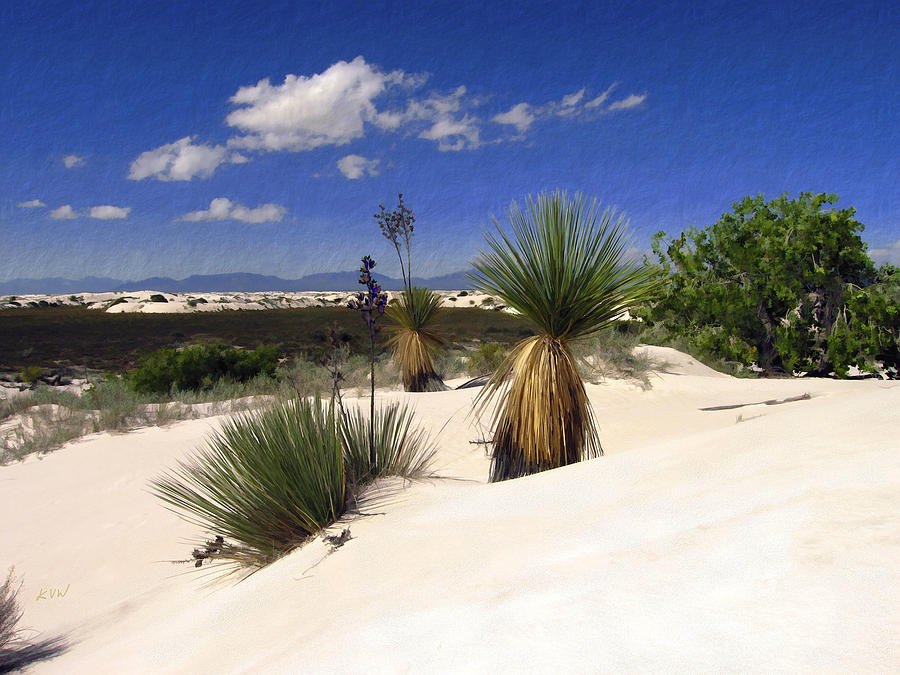 White Sands Photograph - White Sands by Kurt Van Wagner
