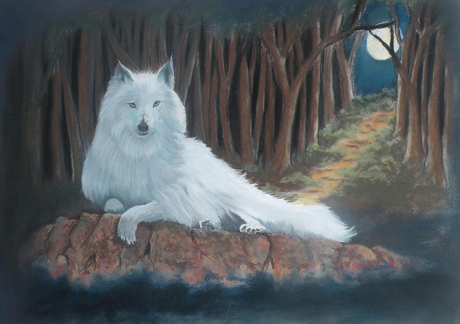 Wildlife Pastel - White Wolf by Charles Hubbard