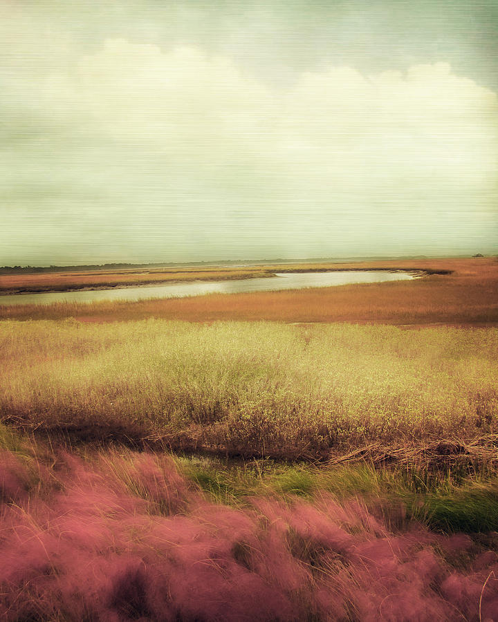 Landscape Photography Photograph - Wide Open Spaces by Amy Tyler