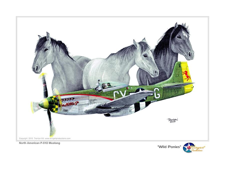 Aviation Drawing - Wild Ponys by Trenton Hill