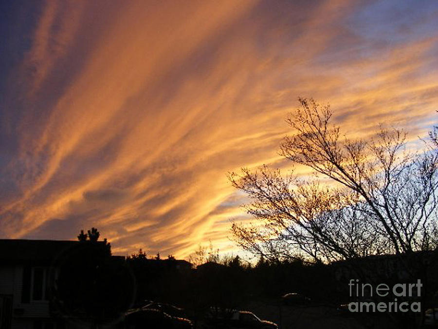 Red Clouds Photograph - Wild Sky Of Autumn by Barbara Griffin