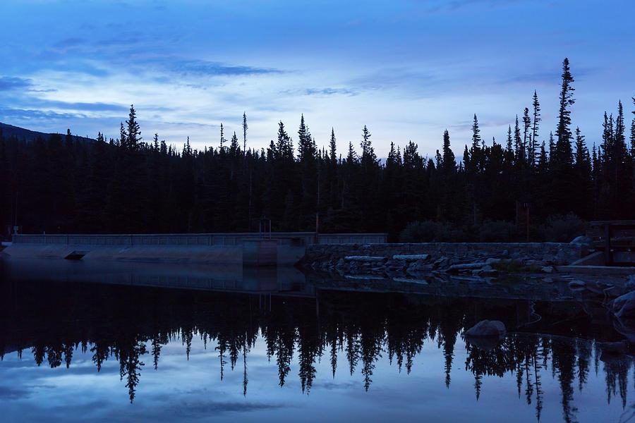 Wilderness Forest Blues Photograph