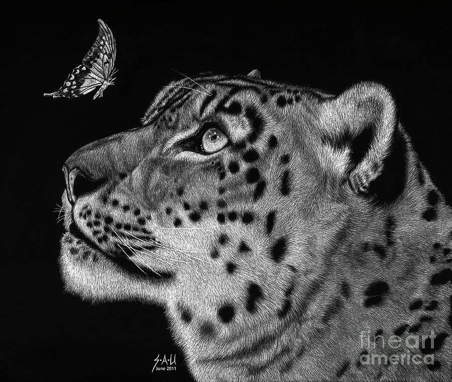 Snow Leopard Drawing - Will You Be My Friend by Sheryl Unwin