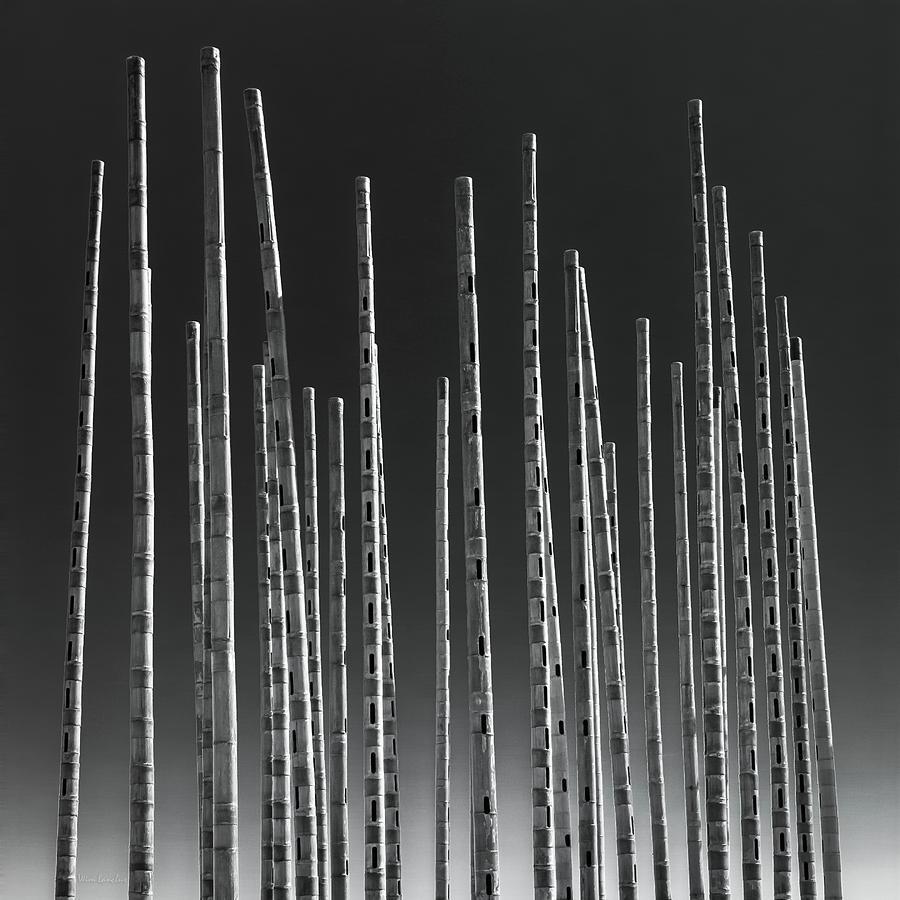 Wind Photograph - Wind Organ by Wim Lanclus