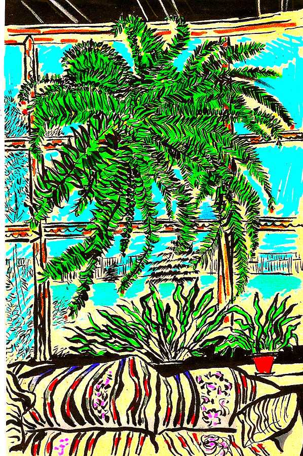 Plant Drawing - Window Loving Fern by Al Goldfarb