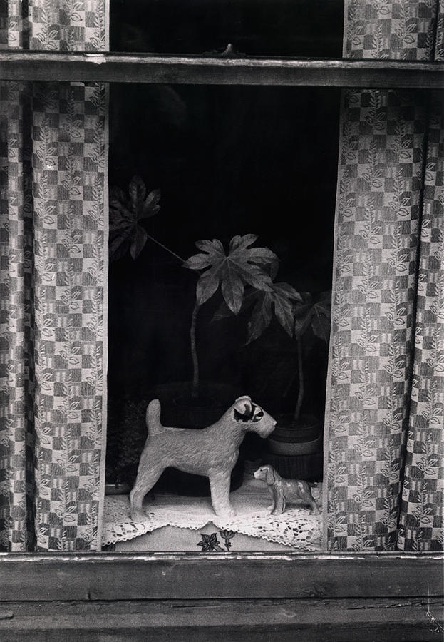 Photograph Photograph - Window Scene by Charles Stuart