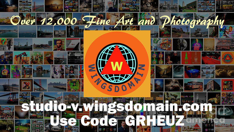 wingsdomain,cyber tuesday,black friday,sale,sales,discount,discounts,coupon,coupons,code,codes,discount code,discount codes,discount coupon.discount coupons,coupon code,coupon codes,christmas present,christmas,present,presents,gift,gifts,holiday,gift idea,gift ideas,wing tong