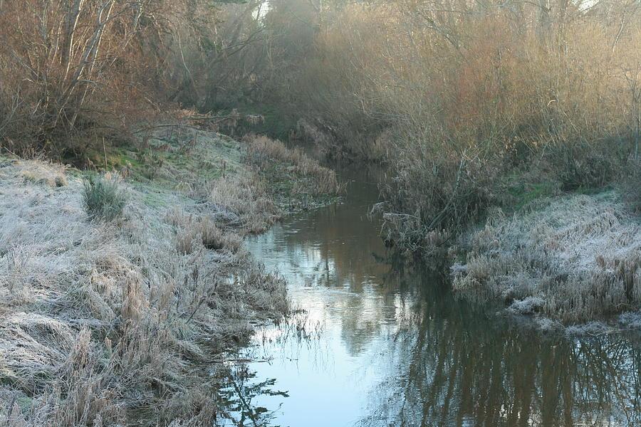 Winter Creek Photograph
