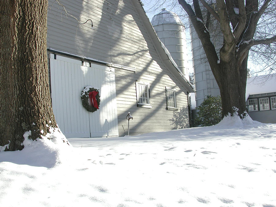 Winter Photograph - Winter Holiday At The Farm. by Robert Ponzoni