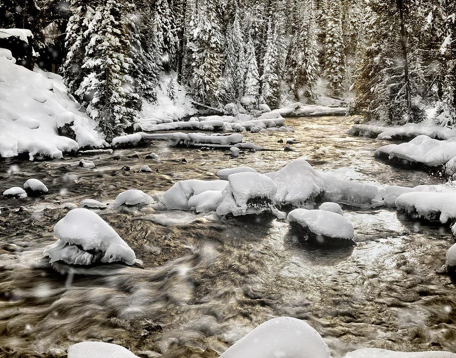 Winter Photograph - Winter River by Leland D Howard
