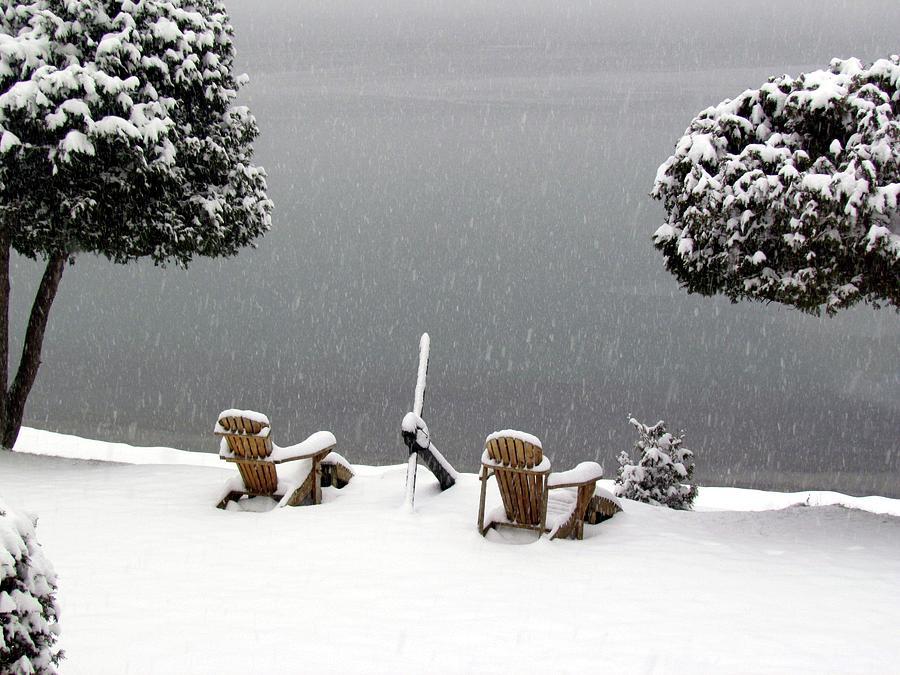 Winter Solitude Photograph