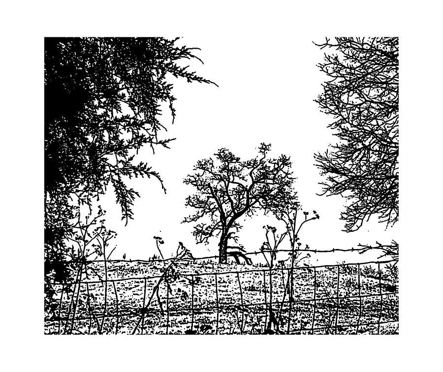 Winter Tree 3 Mixed Media