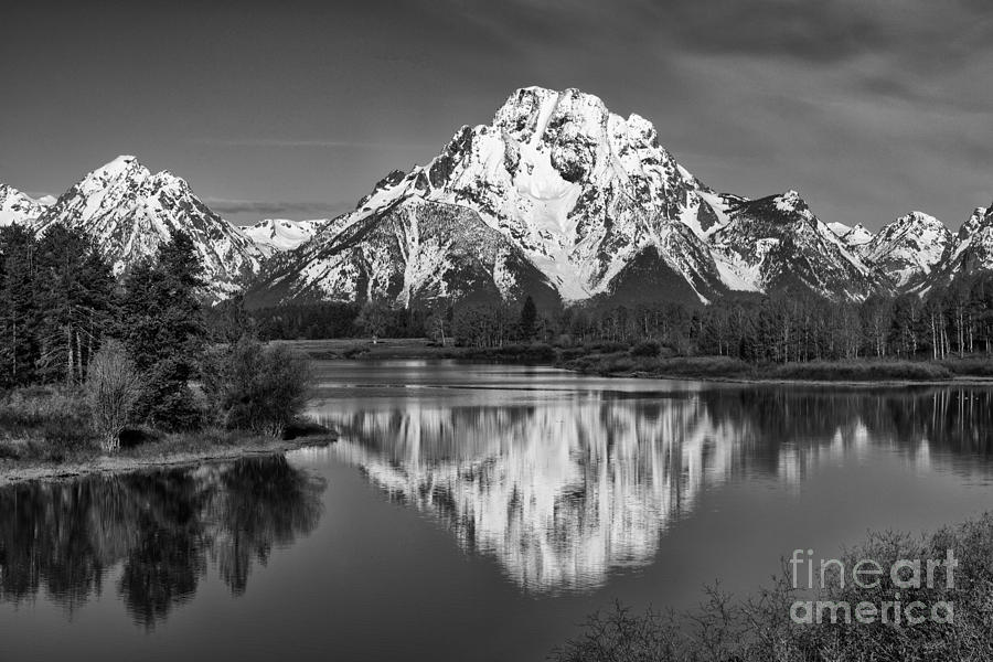 Black & White Photograph - Winters Last Hold by Sandra Bronstein
