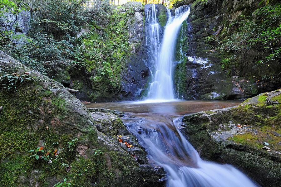 Wolf Creek Falls Photograph - Wolf Creek Falls by Alan Lenk
