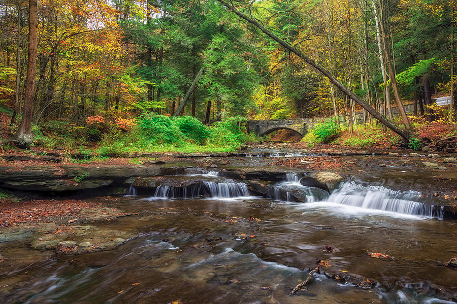 Letchworth Photograph - Wolf Creek by Mark Papke
