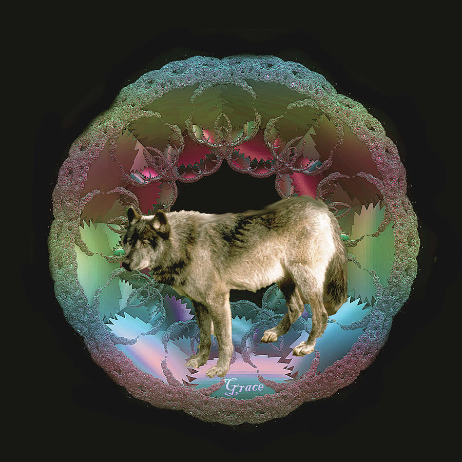 Wolf Photograph