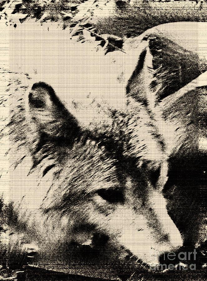 Wolf Lite Design Art Digital Art - Wolf Lite by Debra     Vatalaro