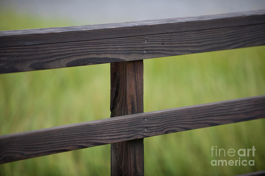 Wood Railing Over The Marsh Photograph