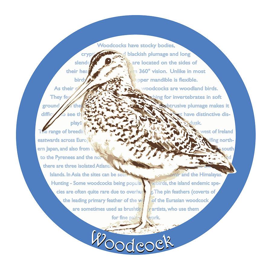 Woodcock Digital Art