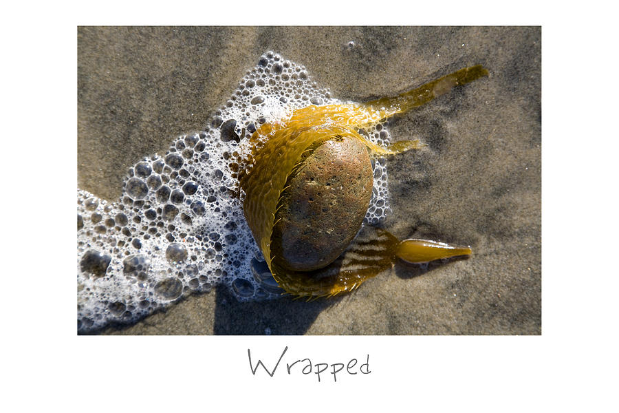 Beach Art Photograph - Wrapped by Peter Tellone