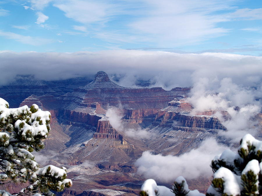 Grand Canyon National Park Photograph - Yavapai Point Winter by Carrie Putz