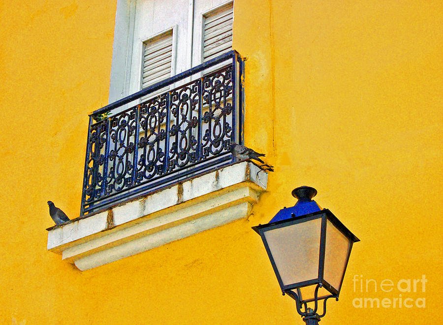 Pigeon Photograph - Yellow Building by Debbi Granruth