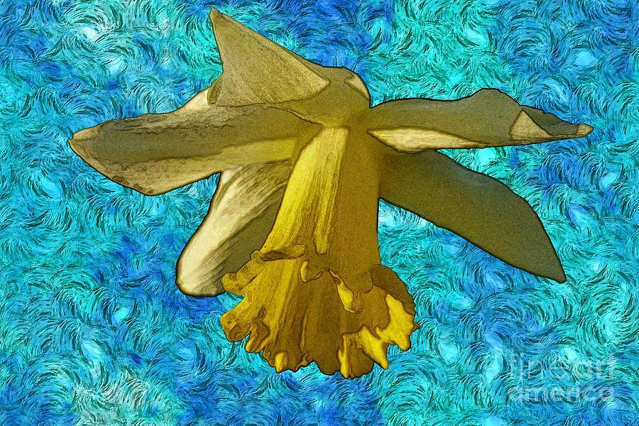Vincent Van Gogh Photograph - Yellow Daffodil 3 by Jean Bernard Roussilhe