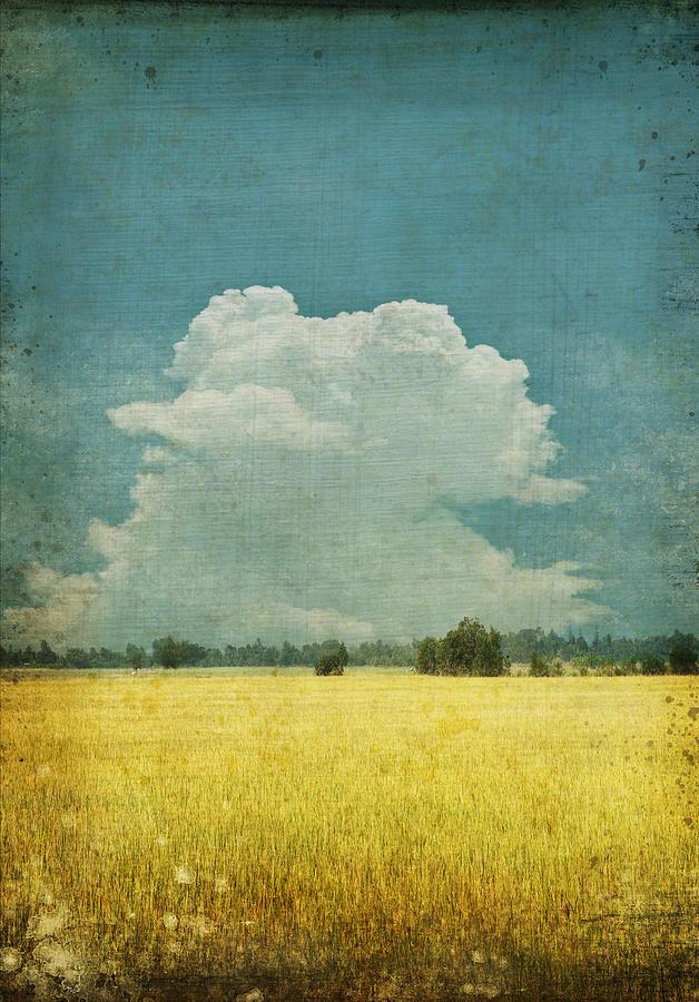 Abstract Photograph - Yellow Field On Old Grunge Paper by Setsiri Silapasuwanchai