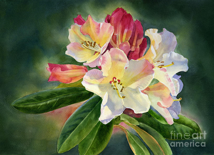 Yellow Painting - Yellow Rhododendron Dark Background by Sharon Freeman