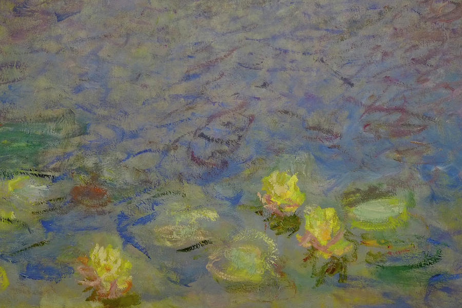 Yellow Water Lilies Monet Photograph