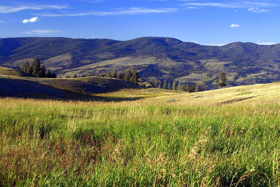 Yellowstone National Park Photograph - Yellowstone Landscape 3 by Marty Koch