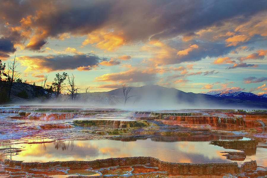 Horizontal Photograph - Yellowstone National Park-mammoth Hot Springs by Kevin McNeal