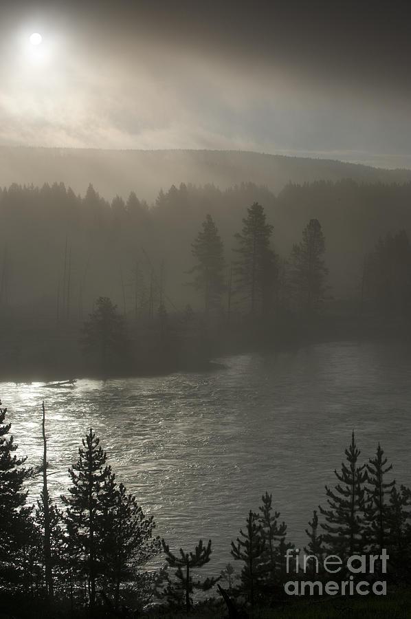 Yellowstone River Fog Photograph
