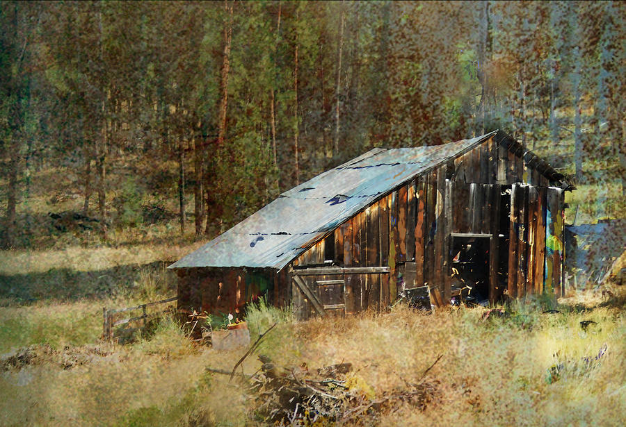 Barn Photograph - Yesteryear Shed 2 by Dale Stillman