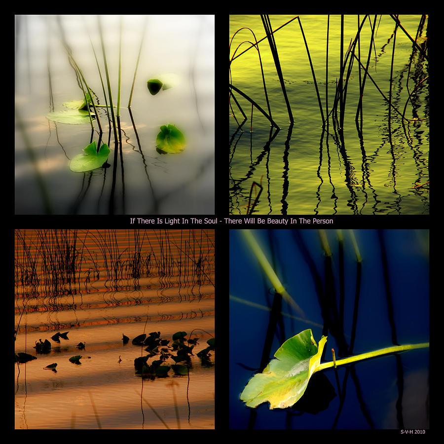Zen Photograph - Zen For You by Susanne Van Hulst