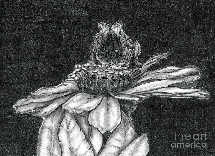 Bee Drawing - Zinnia by Joy Neasley