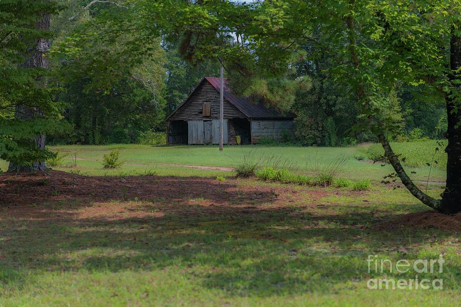 Rural South Carolina Photograph