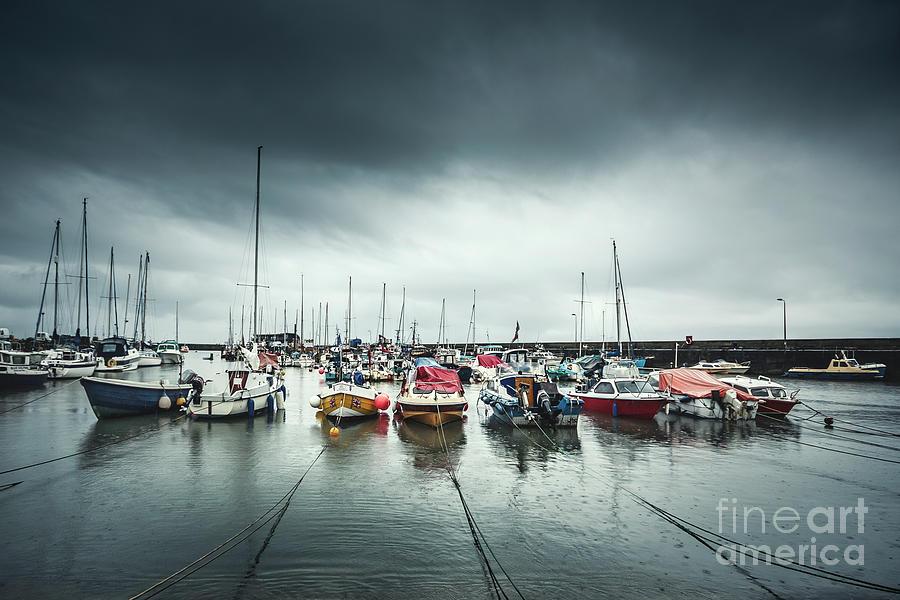 Silver Rain Photograph