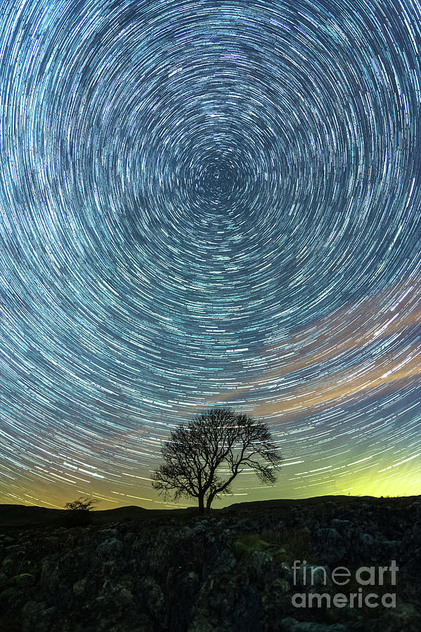 Star Trails At The Lonely Tree On The Limestone Pavement Photograph
