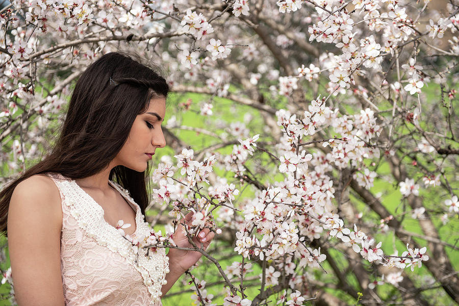 Attractive Young Beautiful Lady,  Enjoying Spring Plum Blossom F Photograph