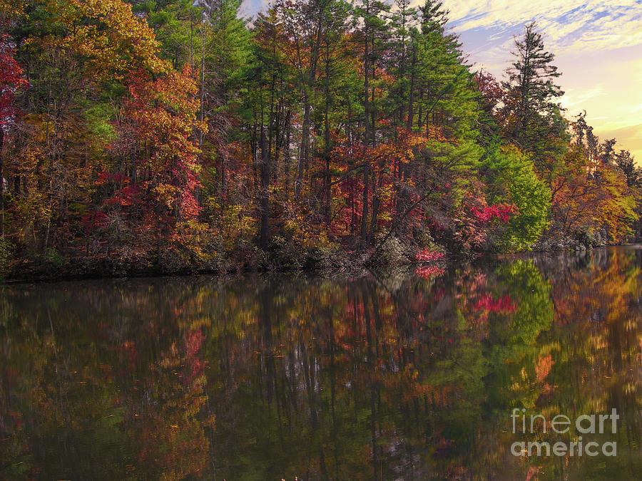 Autumn Color - North Carolina Photograph