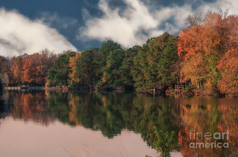 Autumn Colors In Charleston Photograph
