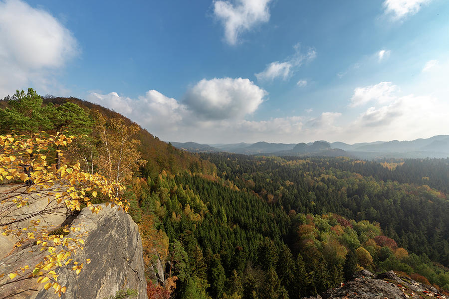 Autumn In The Elbe Sandstone Mountains Photograph