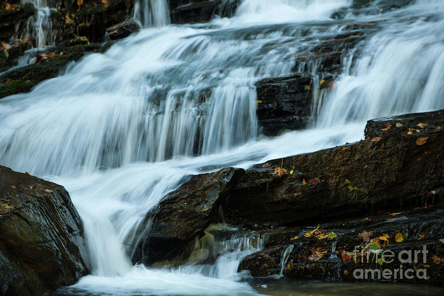 Autumn Leaves Water Fall Photograph