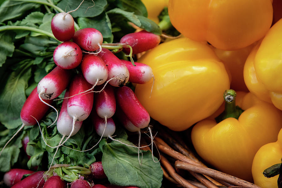 Beet, Vegetable Full Of Nutrition For A Healthy Lifestyle Photograph