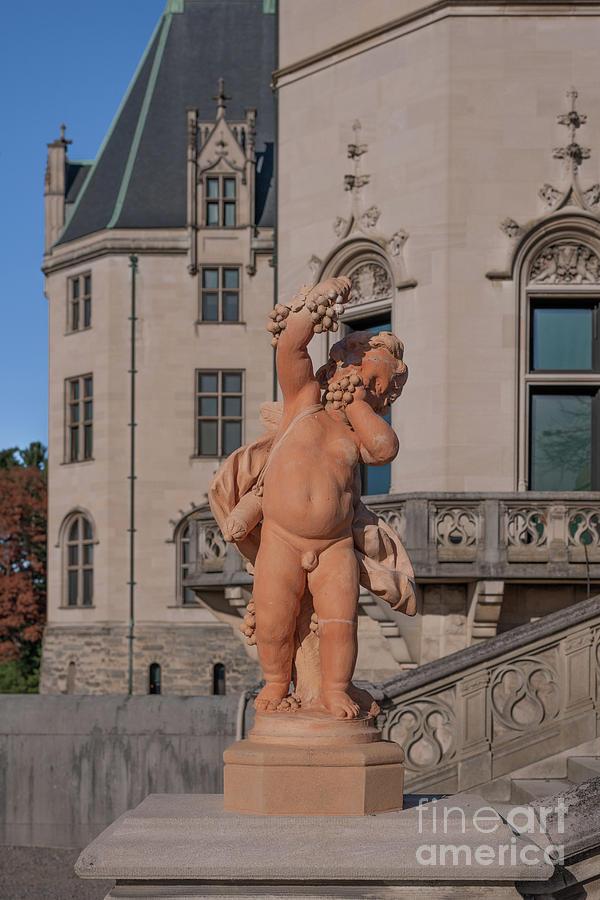 Biltmore Estate - Statue Photograph