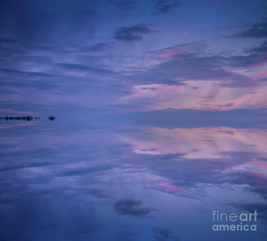 Blue And Pink Photograph
