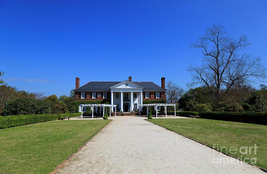 Boone Hall Plantation In Mount Pleasant South Carolina Photograph