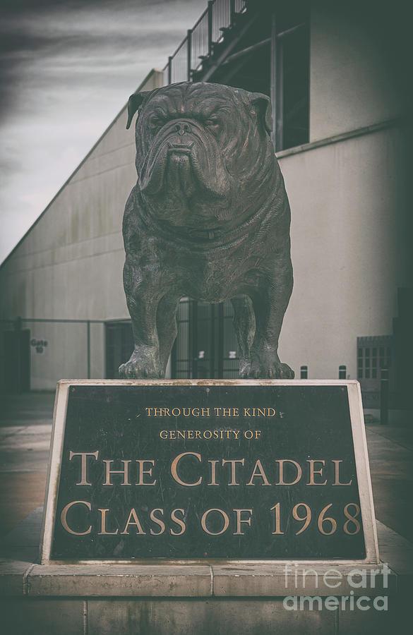 Bulldog Tough - Citadel Photograph