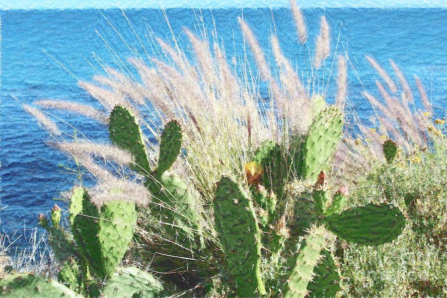 Cactus Water And Pampas Photograph